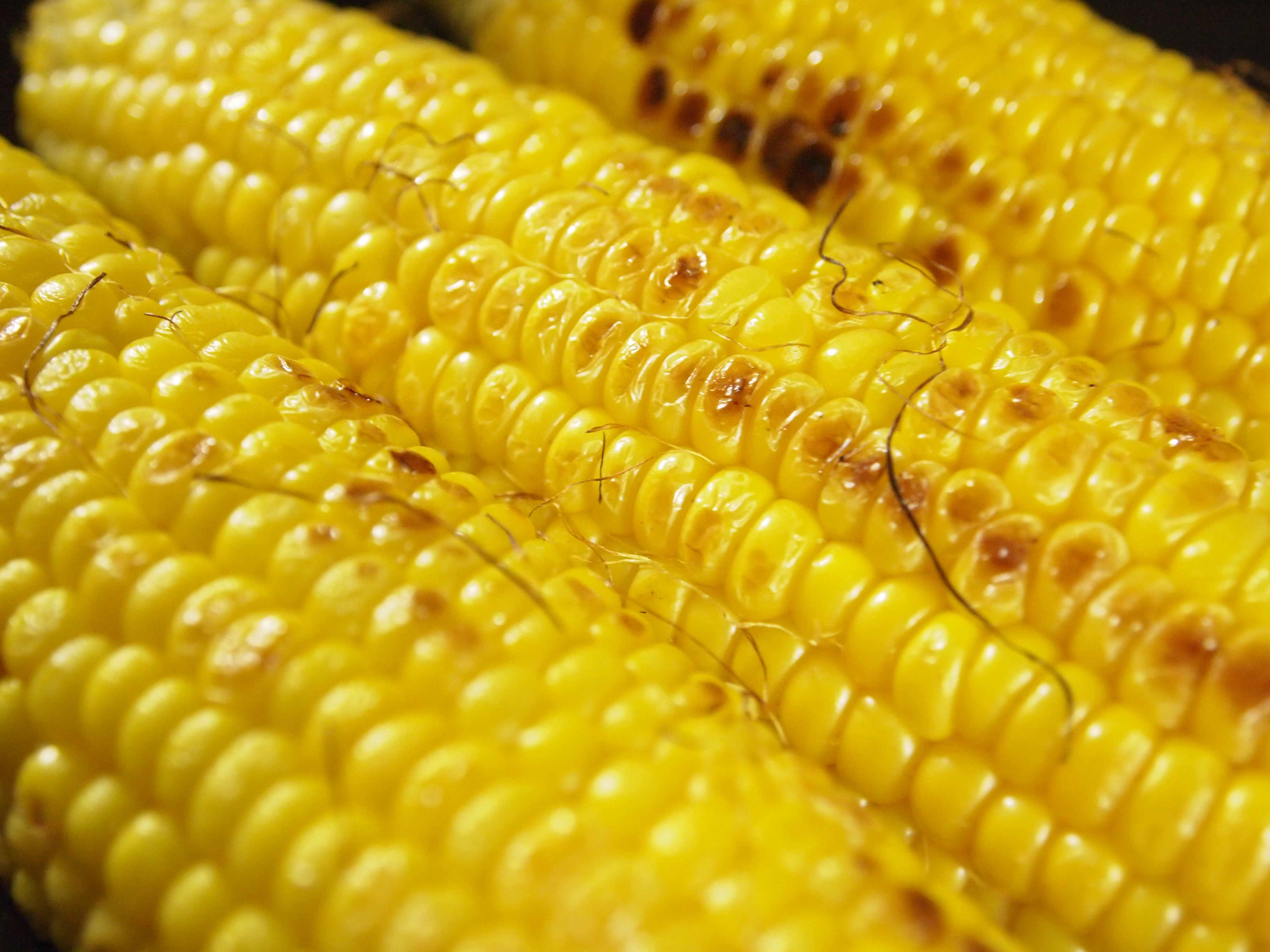Hokkaido Sweet Corn is Off the Hook!