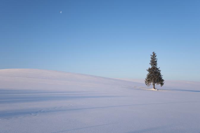 March in Hokkaido – It's still winter!