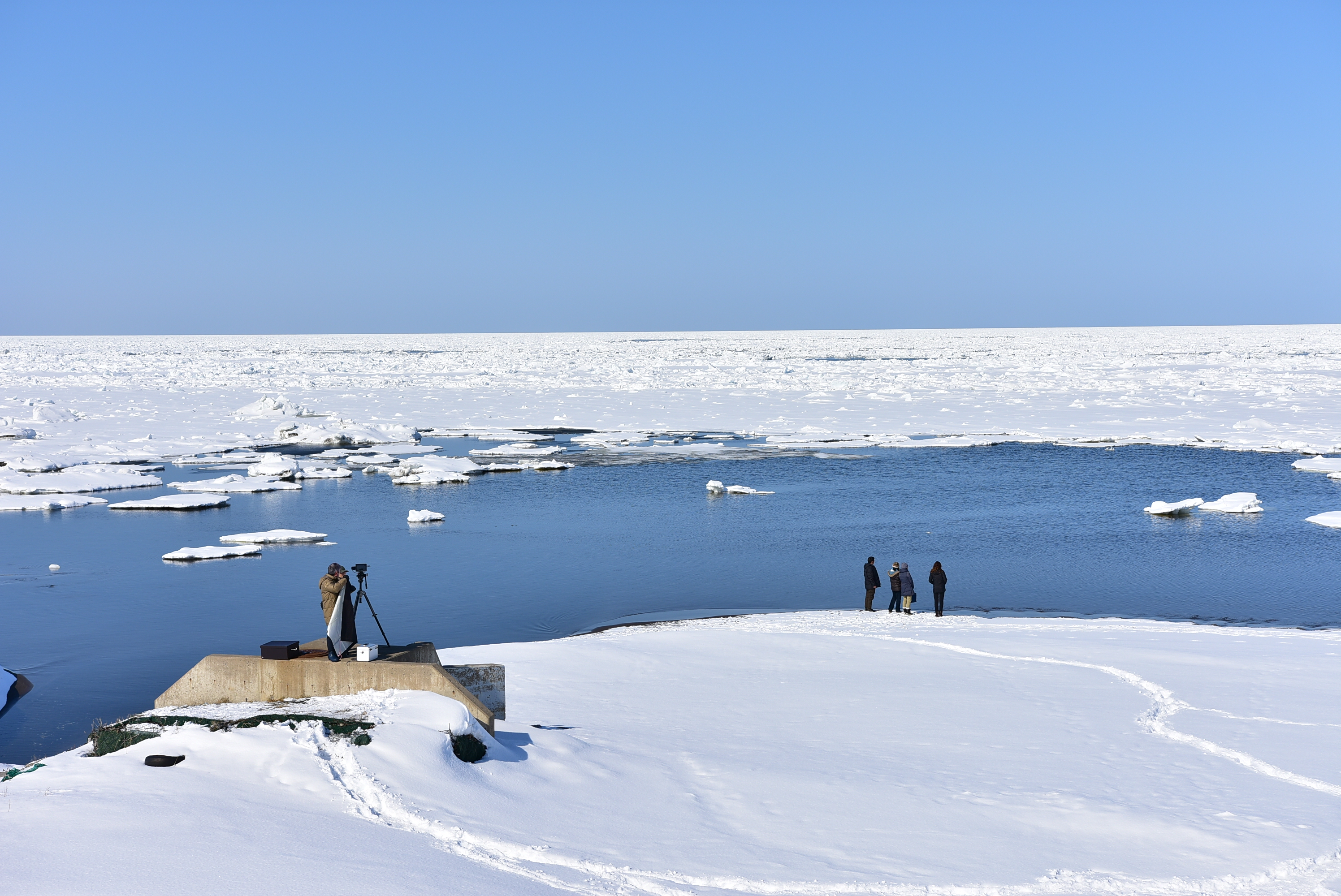 A Winter Journey in the Sea of Okhotsk and the Wildlife that Makes its Home Amongst the Drift Ice