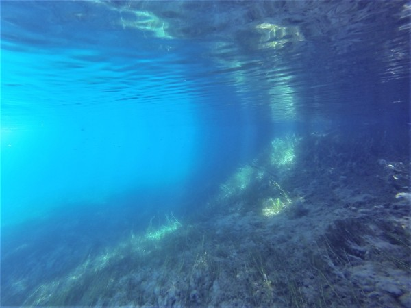One of the Clearest diving experience ever in my life!