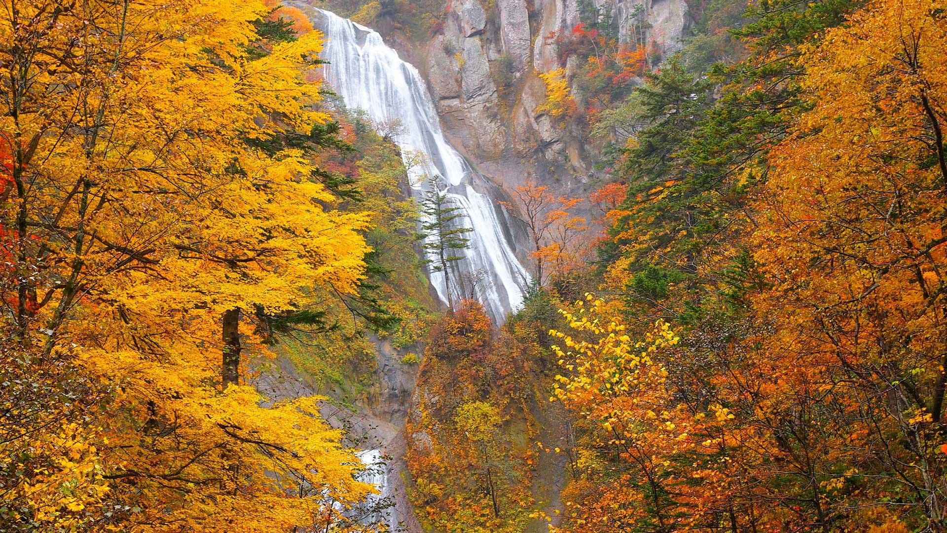 Taisetsuzan-Autumn