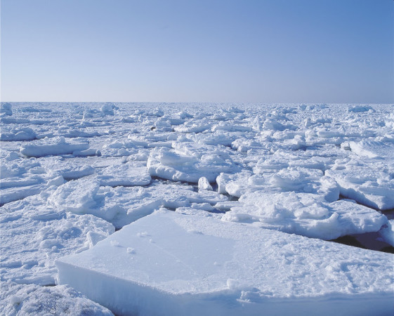 Cold or not? Drift Ice walking