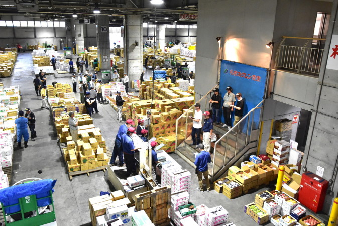 Auction Tours at the Sapporo Central Wholesale Market [Sapporo]