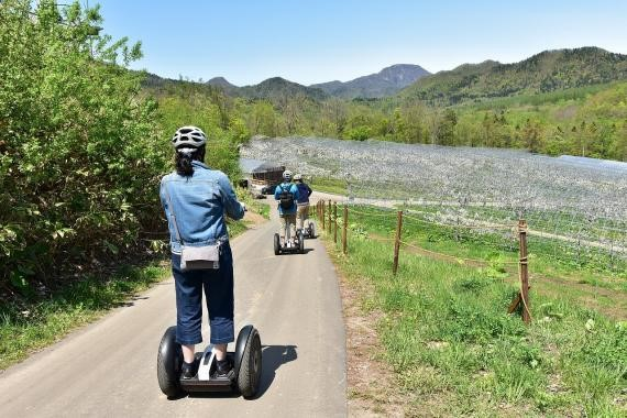 Fruit Picking and Segways