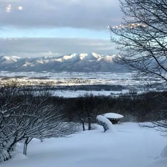 New Years in Hokkaido!